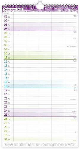 FamilienPlaner 2016 Wandkalender, Chäff-Timer, 5 Spalten, 22,5 x 42cm, 18 Monate bis Dez 2016 - 3