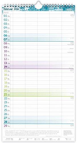 FamilienPlaner 2016 Wandkalender, Chäff-Timer, 5 Spalten, 22,5 x 42cm, 18 Monate bis Dez 2016 - 4