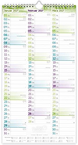 FamilienPlaner 2016 Wandkalender, Chäff-Timer, 5 Spalten, 22,5 x 42cm, 18 Monate bis Dez 2016 - 5