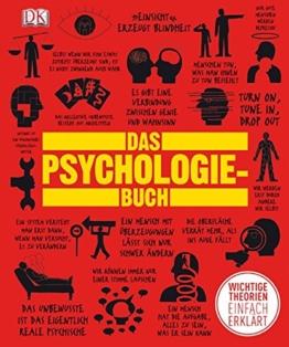 Das Psychologie-Buch: Wichtige Theorien einfach erklärt -